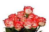 "Roses ""Be Mine..."" — Stock Photo"