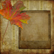 Art frame on pattern paper - Stock Photo