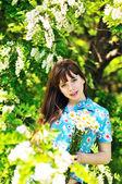 Near blossom acacia — Stock Photo