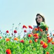 Stock Photo: Poppy tenderness