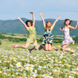 Stock Photo: Jump in field