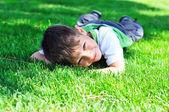 Rest in grass — Стоковое фото