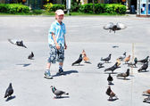 Boy with doves — Stock Photo