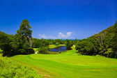 Golf field at island Praslin, Seychelles — Stock Photo
