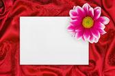 Kniha přání a květin na červenou látkou — Stock fotografie