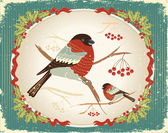 Bullfinches in winter.Vintage christmas card for text — Stock Vector