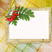 Greeting card with space for text — Stock Photo