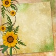 Floral greeting card with place for your text. — Stock Photo #7099338