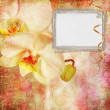 Floral greeting card with place for your text. — Stock Photo #7560105