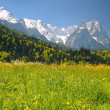 Stock Photo: Landscape in bavariAlps