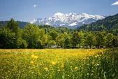 Landscape in the bavarian Alps — Stock Photo