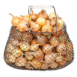 Onions in the mesh bag - Stock Photo