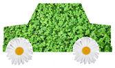 Carro ecológico — Foto Stock