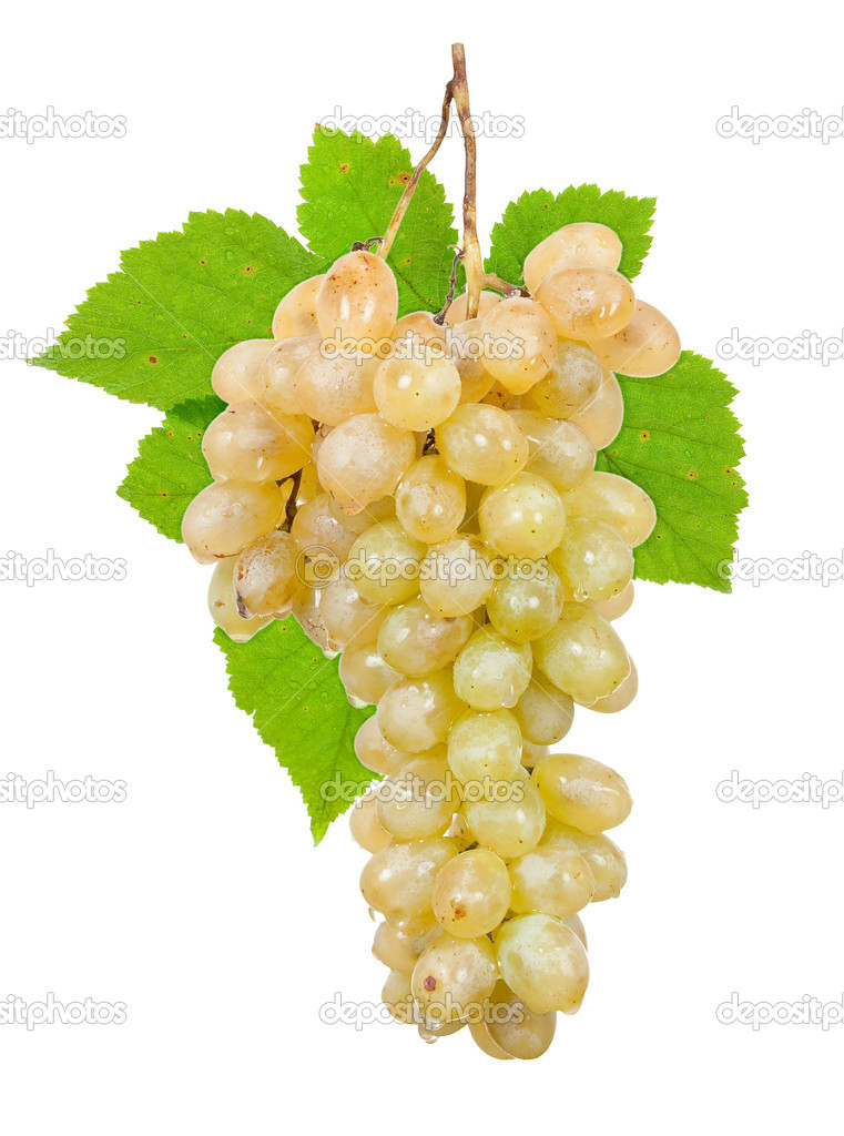 Bunch of ripe grapes — Stock Photo #6999959