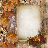 Autumn frame of oak leaves on a grange background. — Stok fotoğraf