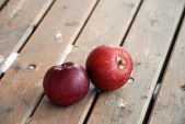 Red apples, Frost and snow — Stock Photo