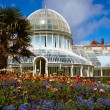 The Palm House at the Botanic Gardens - Stock Photo