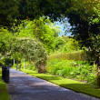 Belfast Botanic Gardens - Stock Photo