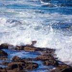 Breaking wave — Stock Photo