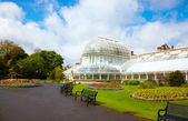 The Palm House at the Botanic Gardens — Stock Photo