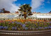 Belfast Botanic Gardens — Stock Photo