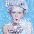 Frozen fairy - Stock Photo
