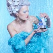 Frozen fairy with toyhouse — Stock Photo