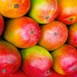Mango fruits — Stock Photo #7514170