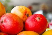 マンゴー果実 — ストック写真