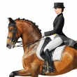 Royalty-Free Stock Photo: Equestrian sport - dressage