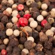Assorted peppercorns - 图库照片