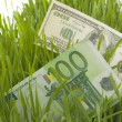 Royalty-Free Stock Photo: Green grass with the dollar and euro