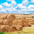 Landscape view of a farm field with gathered crops - Stockfoto