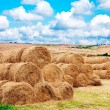 Landscape view of a farm field with gathered crops - Stock Photo