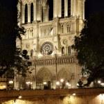 Notre Dame de Paris — Stock Photo #6929627