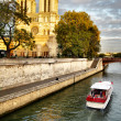 Notre Dame de Paris — Stock Photo #7003632