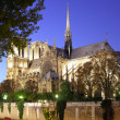Notre Dame de Paris — Stock Photo #7003635