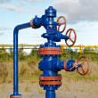 Wellhead. - Stock Photo