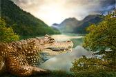 Alligator in habitat — Stock Photo