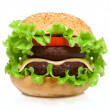 Hamburger — Stock Photo #7759198