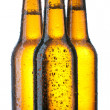 Three Bottle with beer and drops — Stock Photo
