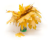 Yellow autumn leaves bouquet — Stock Photo
