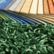 Samples of collection multicolored linoleum on carpet backgr — Stock Photo #6779018