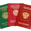 Russian, Uzbekistan and old USSR passports - Stock Photo
