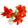 Red lilies (Lilium pensylvanicum) — Stock Photo