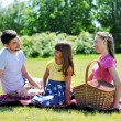 Family on picnic — Stock Photo #7173631