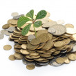 Plant in coins — Stock Photo