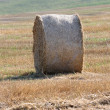 Haystack — Stock Photo #7159256