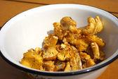 Chanterelle mushroom — Stock Photo