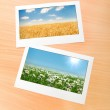 Picture frames with nature photos — Stock Photo #6842882